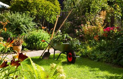 gardenservices1