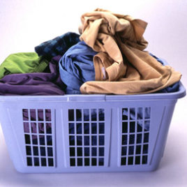 Laundry and Dry cleaner