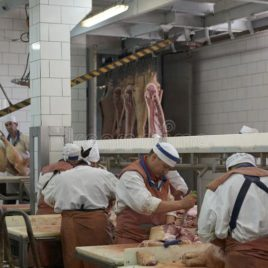 Meat Process Plant and Deli including Buildings